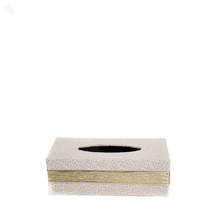 Fennel Tissue Box - Cream Colour with Gold Strap